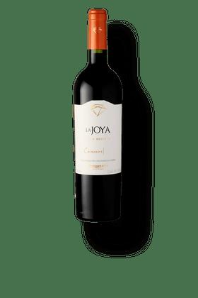 Vinho-Tinto-Bisquertt-La-Joya-Gran-Reserva-Carmenere-2018