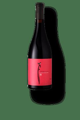 Vinho-Tinto-Pago-Casa-Gran-Falcata-2016