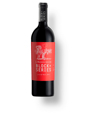 Vinho-Tinto-Bouchon-Block-Series-Malbec-2016