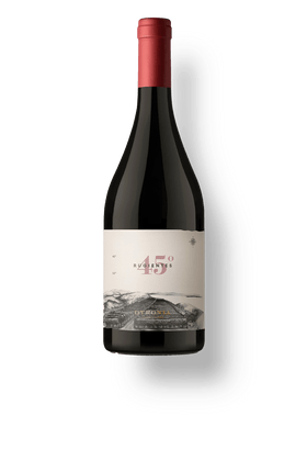 Vinho-Tinto-Otronia-45-Rugientes-Pinot-Noir-2017