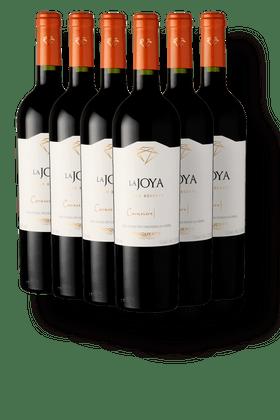 Kit-com-6-Vinhos-Tintos-Bisquertt-La-Joya-Gran-Reserva-Carmenere-2018