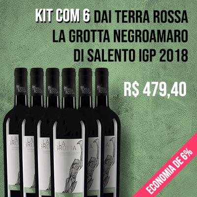 Kit com 10 Vinhos Chilenos