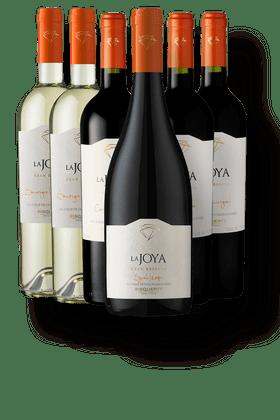 Kit-com-6-Vinhos-Bisquertt-La-Joya-