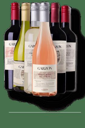 Kit-com-6-Vinhos-Garzon
